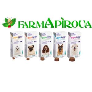 Bravecto 500 mg tabletă masticabilă pentru câini de talie medie (>10-20 kg)