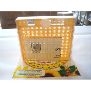 Cutie pentru cresterea matcilor